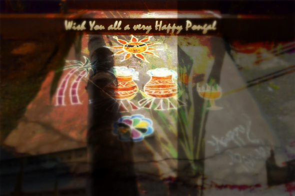 Wish you all a very Happy Pongal